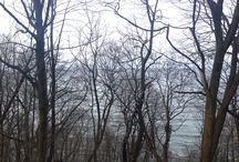 Море / Балтийское море