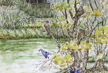 En Plein Air / watercolor paintings