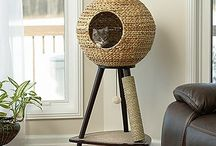 Cat Homes & Interiors / Tips & ideas for a beautiful, pet-friendly home ! Catify your home for a happier, more relaxed cat.  #cat #chat #cat tree #cat-friendly #home
