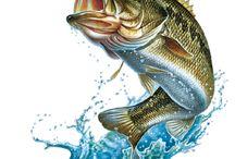 Tatouages pêche