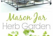 veggie and herb gardens