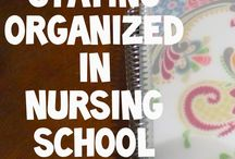 Nurses Nest