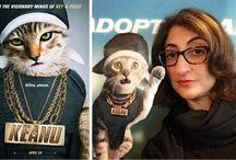 cat movie