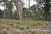 Cheap Land Qld / Real estate for sale in Queensland Connecting city to country.