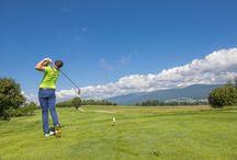 Golfen im Mühlviertel / Die Golfplätze in den sanften Hügeln des Mühlviertels bieten eine abwechslungsreiche Umgebung um Ihren Abschlag zu perfektionieren.