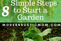 Vegetable Gardening How- Tos and Tips / All about starting a veggie garden and making it productive.