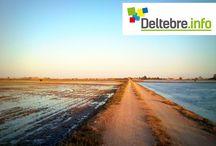 Deltebre.info / Portal de Deltebre amb informació de serveis, directori professional, guia comercial, turística i cultural.