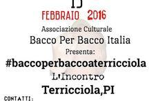 #baccoperbaccoaterricciola 13 Febbraio 2016 / I Viaggiatori del Gusto, dopo aver visitato e gustato in giro per l'Italia,tornano a Terricciola PI. Per il primo appuntamento del 2016,con l'Evento #baccoperbaccoaterricciola  Sabato 13 Febbraio 2016   Presso La Sala del Complesso Bandistico, Via S.Lazzaro N.7 Selvatelle,Terricciola PI 56030