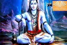 Maha Shivaratri Special Rituals 2014 / Maha Shivaratri Special Rituals 2014  on 27th and 28th February 2014  http://www.vedicfolks.com/others/karma-remedies/shared-homam-/shivaratri-special-rituals-2014.html