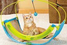 katt saker / katt leksaker