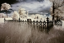 Cemeteries / by Heather McClay McDonald