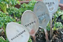 Mon jardin malin / Jardinage (idées décoration écolos)