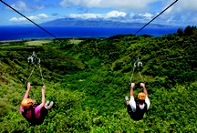 Girls just wanna have fun! Maui! Ox  / by Cassie Meyers