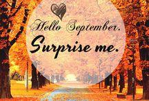Hello, months