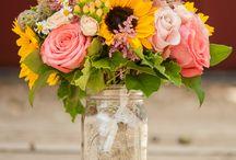 Blomstrer