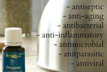Aromatherapy - oregano / by Cathy Mowbray