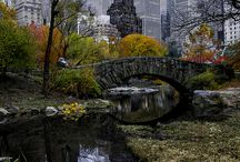 New York........gotta get there / by Holly Semelbauer