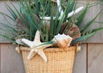 Summer Decor / by Shelley Oenbrink
