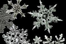 Photo - winter
