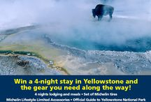 Go Green at Yellowstone with #MichelinYPF / by Michelin Guides