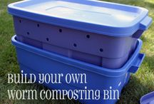 Composting/Green garden ideas