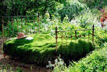 Meditation Garden / by Katie Jones