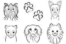 Drawings Animal