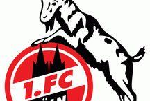 1.FC KÖLN 1947,RHEIN ENERGIE STADION,MANNSCHAFT,HISTORISCH,FANS,TRIKOTS