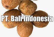 Supplier Nutmeg Oil Indonesia
