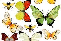 Butterfly tree ornaments
