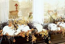 Fall Windows
