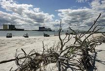 The Brigantine Cove