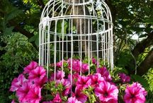 kwiaty w klatce