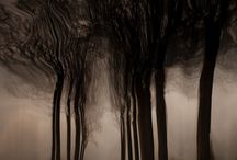 Chris Friel Photography / Some of my favourite work by UK photographer, Chris Friel. More at http://www.cfriel.com and https://plus.google.com/+ChrisFriel / by Jan McCartney