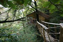 Domy na stromoch / Tree Houses