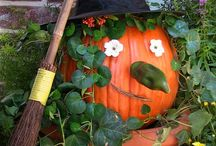 Fall & Halloween Decorating Ideas / by Debbie Jackson