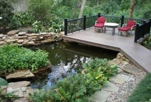 Landscaping & Outdoor Living / by Deb Fuss