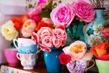 Flowers / by Shelly Lamberta