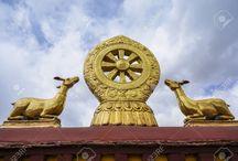A megvilágosulás magasztalása / A Tan Kapuja Buddhista Főiskola 1. évf. Théraváda buddhizmus órájának feladata.  Asvaghósa: Buddha élete (Buddhacsarita) egy fejezetéhez képek gyűjtése.