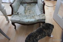 Upholstery chair DIY