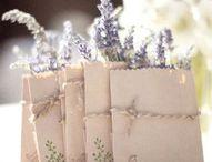 Lavenders, purple, pink...