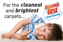 Homewood Carpet Cleaning