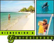 Guardalavaca Cuba / All about Guardalavaca Cuba – Links to important websites focused and dedicated on Guardalavaca, Things to do in Guardalavaca, Best Hotels in Guardalavaca and Private restaurants in Guardalavaca Cuba / by Cuba Travel