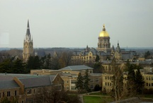University of Notre Dame / by Nancy Cannon