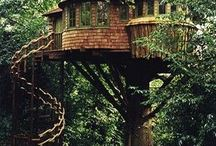living in the trees / Mostly tree houses, but also a lot of general appreciation of tree surrounded dwellings.