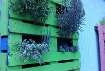 Landscaping at Hammocks / 7285 Roswell Road, Sandy Springs, Ga. 30328