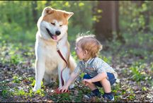 Dogs are Indeed Men's Best Friends. Here are 12 Reasons Why