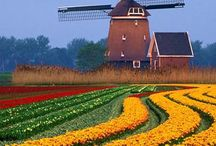 Discover Holland