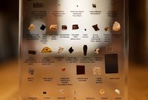 Museum Exhibit Class