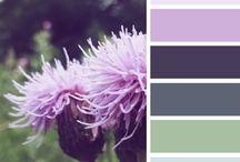 color combos / by Leah Gosney